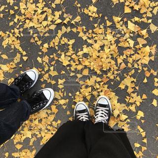 落ち葉と靴の写真・画像素材[959060]