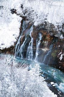 冬の白ひげの滝の写真・画像素材[959151]