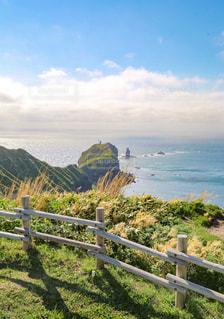神威岬の写真・画像素材[1184785]