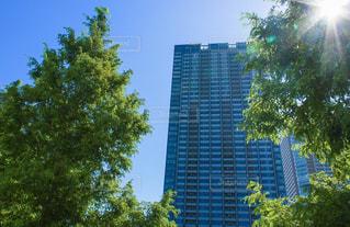グリーンに囲まれたビルの写真・画像素材[1202500]