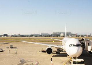 空港で駐機場の上に座っている大型旅客機の写真・画像素材[1242854]