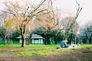 公園で居眠りの写真・画像素材[1874584]