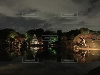 秋の写真・画像素材[295021]