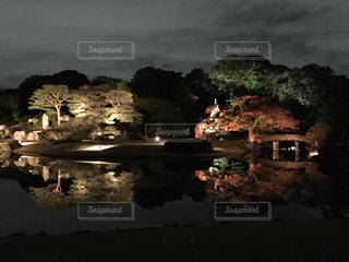 秋の写真・画像素材[295023]