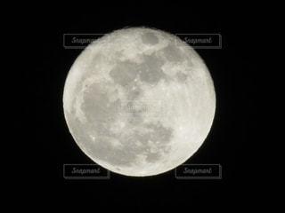 月の写真・画像素材[960832]