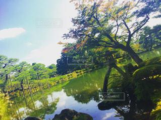 日本三大庭園 兼六園の写真・画像素材[961974]