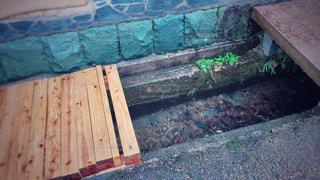 ヒノキと水路の写真・画像素材[1042050]