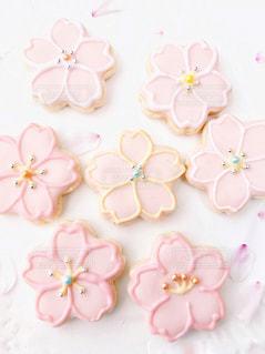 桜の写真・画像素材[1098574]