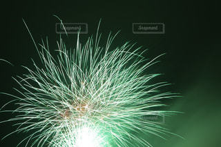 空に花火の写真・画像素材[1178707]