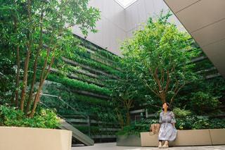 庭に植物を持つ人の写真・画像素材[2440475]