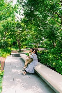 庭のベンチに座っている人の写真・画像素材[2440510]