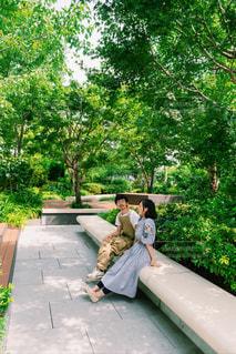 公園のベンチに座っている人の写真・画像素材[2440513]