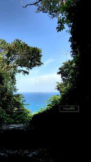 斎場御嶽から眺める神の島、久高島の写真・画像素材[1185875]