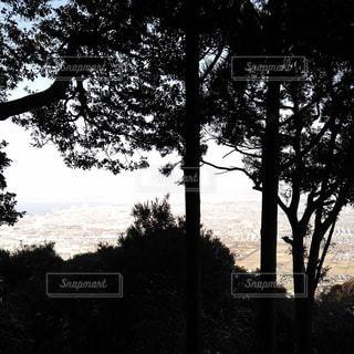 山頂からの眺めの写真・画像素材[961961]
