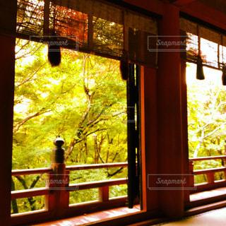 お寺からの眺めの写真・画像素材[961822]