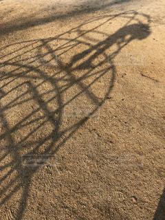 ジャングルジムと子供の影の写真・画像素材[1103841]