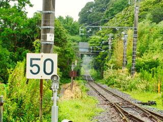 背景の木と線路沿いの看板の写真・画像素材[962895]