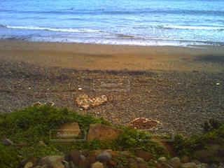 ビーチの写真・画像素材[964335]