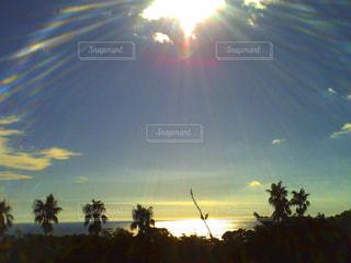 南国の海の写真・画像素材[966699]