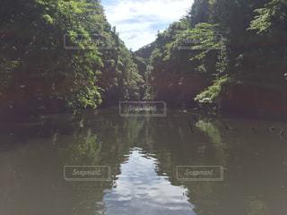 木々 に囲まれた水の体の写真・画像素材[964510]