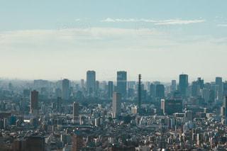大都市の風景の写真・画像素材[972533]