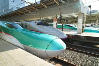 新幹線の写真・画像素材[984569]
