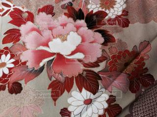 赤白とピンクの花の写真・画像素材[966850]