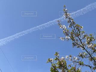 飛行機雲の写真・画像素材[4408927]