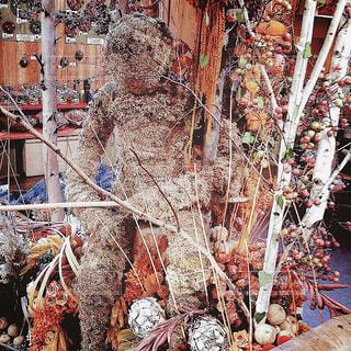 【北海道の旅写真】ドライフラワーのお店🏵の写真・画像素材[986868]