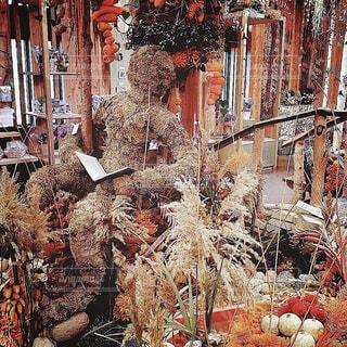 【北海道の旅写真】ドライフラワーのお店🏵の写真・画像素材[986869]