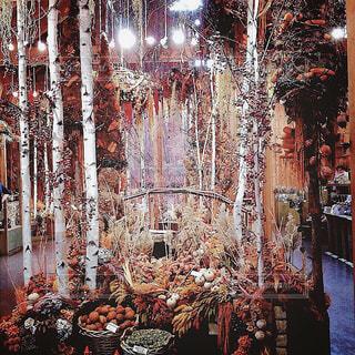 【北海道の旅写真】ドライフラワーのお店🏵の写真・画像素材[986871]