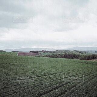 【北海道の旅写真】美瑛の風景✧ - No.989396