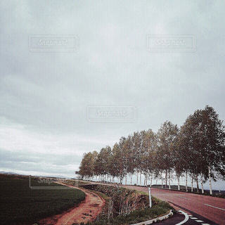 【北海道の旅写真】美瑛の風景✧ - No.989399