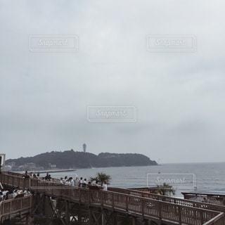 【江ノ島の旅写真】新江ノ島水族館𓇼 - No.1009345