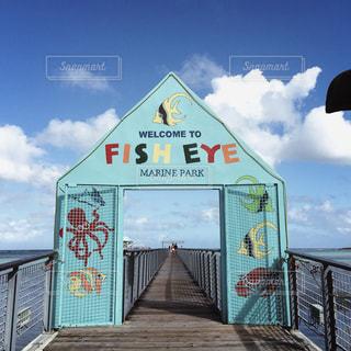 【グアムの旅写真】FISH EYE𓆟𓇼 - No.1027450