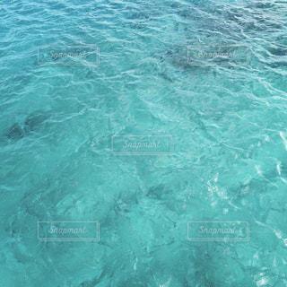 【グアムの旅写真】FISH EYE𓆟𓇼 - No.1027484