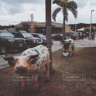【グアムの旅写真】グアム・プレミア・アウトレット🌺🛒の写真・画像素材[1046268]