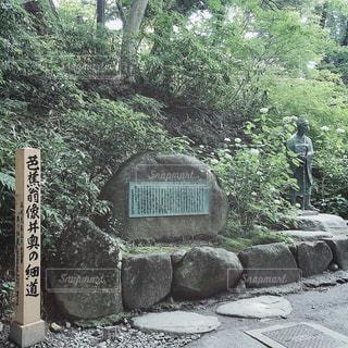 【秋田山形の旅写真】中尊寺🙏🏼✨ - No.1144484
