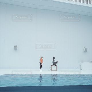 【秋田山形の旅写真】加茂水族館🌊🌝の写真・画像素材[1291102]