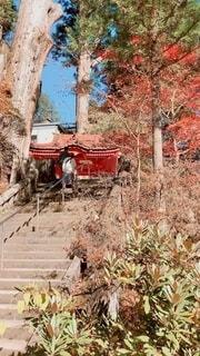 榛名神社の写真・画像素材[2704917]