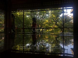 京都の写真・画像素材[966960]