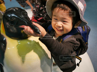 ペンギンと子供の写真・画像素材[966445]