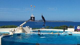 水の体の横に座っている青と白のボートの写真・画像素材[966439]