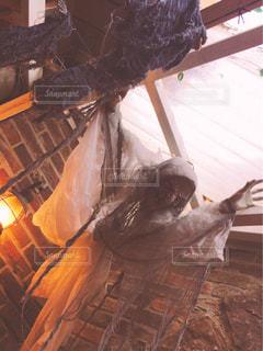 ゾンビに襲われるの写真・画像素材[969503]
