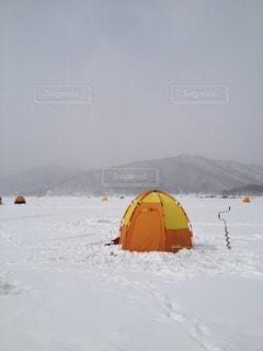 冬の写真・画像素材[31936]