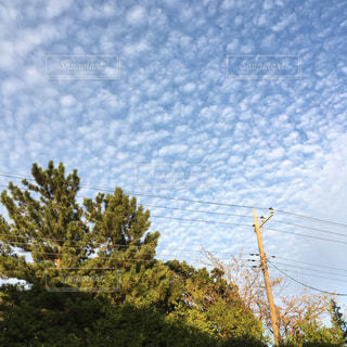 秋の空の写真・画像素材[967283]