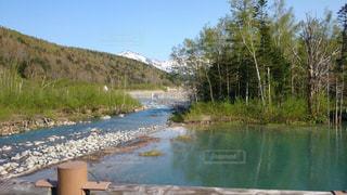 青い池と大雪山連峰の写真・画像素材[967305]