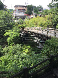 山梨県 名勝 猿橋の写真・画像素材[968124]