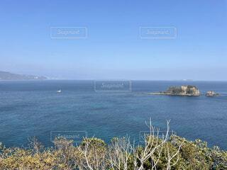 伊豆の海の写真・画像素材[4258054]