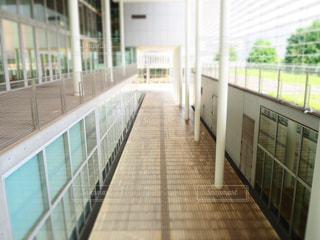 休日のキャンパスの写真・画像素材[969082]